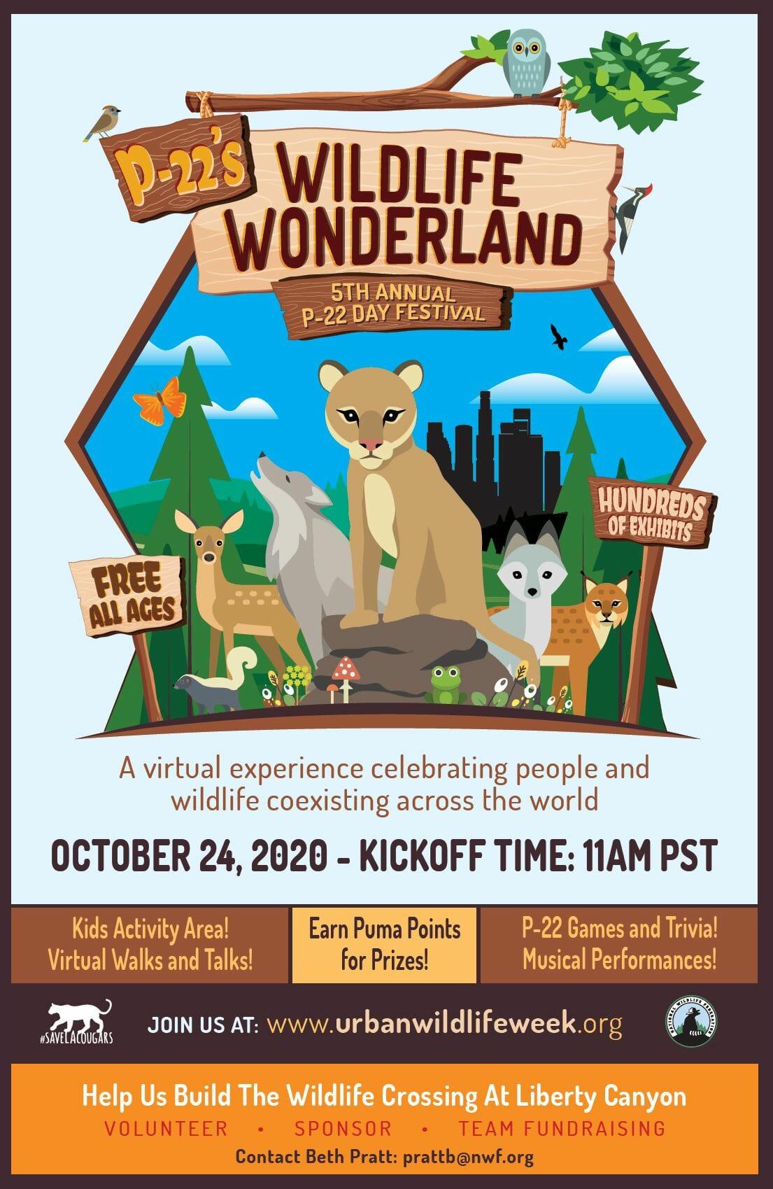 P-22 Day International Urban Wildlife Festival | Online