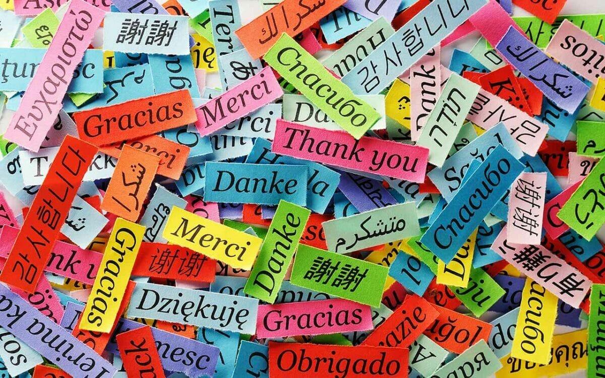 Spanish for Elementary Students   SJPL   Online